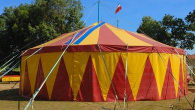 Photo of Il circo Frilli