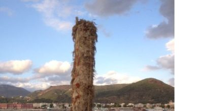 Photo of Salerno: Capitaneria, avviso di pericolo per un palo affiorante