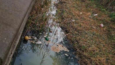 Scafati, Salerno: Il Canale Bottaro del Sarno inquinato, la segnalazione dei residenti