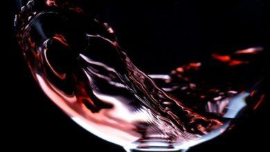 Photo of Go Wine a Baronissi: il corso di degustazione vino in quattro serate