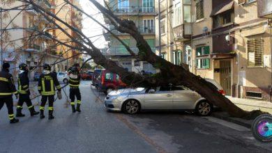 Photo of Allerta meteo a Salerno e provincia, danni e crolli