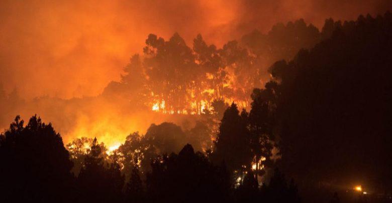 Canarie Incendio -ph.agenzia adnkronos