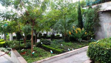 Photo of Giardini della Minerva a Salerno