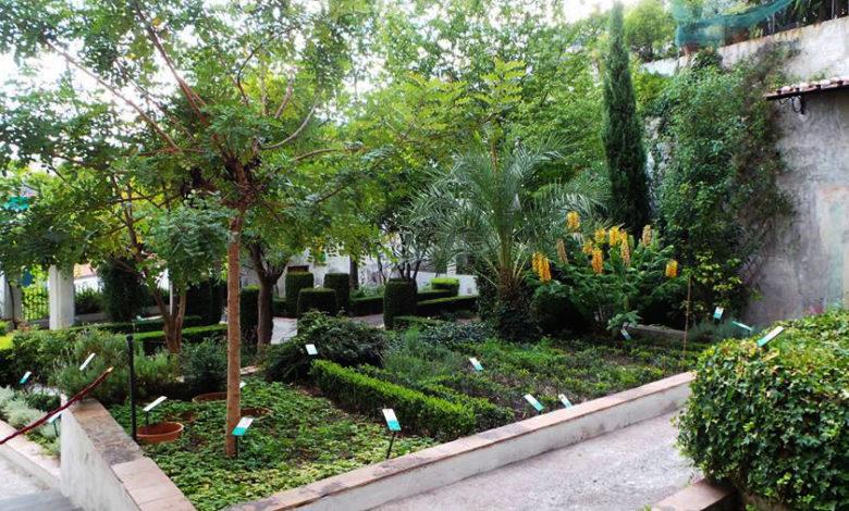 Giardini della Minerva, Salerno