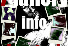 7gallery Info Sinestesie
