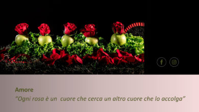 Clalusa 2021-Amore- Tecnica Fotografia su Tela e Acrilico-7Gallery di Sevensalerno